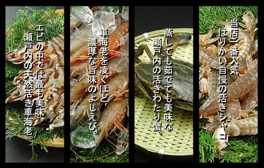 瀬戸内の蟹・海老・蝦蛄