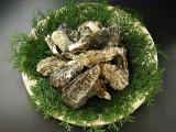 瀬戸内産 真牡蠣(養殖)