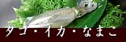 瀬戸内のタコ・イカ・なまこ