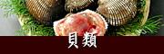 瀬戸内の貝類